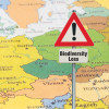 The Black Triangle of European Biodiversity: Austria, Hungary and the Czech Republic