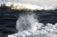 Climate changes have brought to the Arctic Ocean not only glaciers depletion but also huge waves